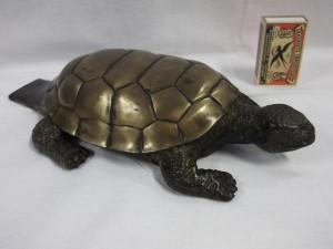 schildpad brons